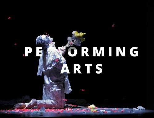 Segment Manager Performing Arts – Europe flexible (UK, Germany, France, Spain, Italy)